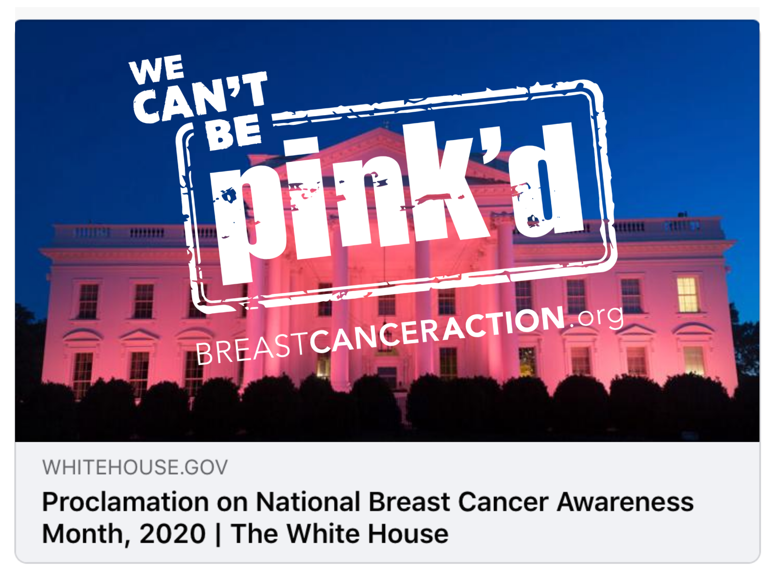 The Presidental Proclamation Image with the Think Before You Pink stamp stamped over it