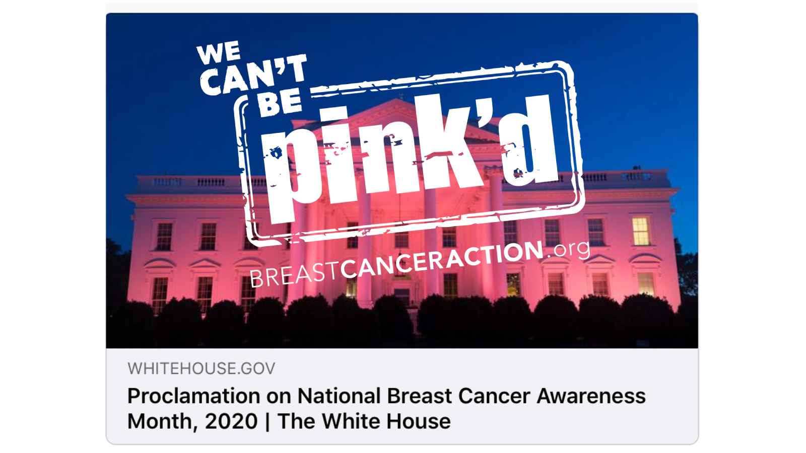 The image accompanying the Presidential Proclamation with the Think Before You Pink stamp stamped over it